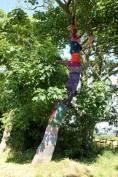 Cosy-Tree