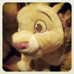 Simba plush at the Disney shop, Belfast after our Science Shop 1st place prize ceremony..