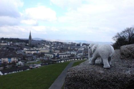 TE-Derry