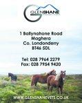 Glenshane vets quarter page